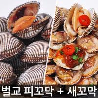 [당일채취발송] 벌교직송 새꼬막/피꼬막 1kg~5kg