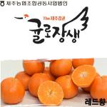 귤로장생 제주 레드향 4.5kg