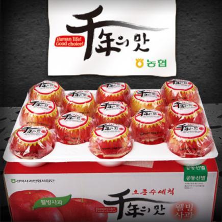 [농협]껍질째 먹는 세척 사과 5kg(14-16과)
