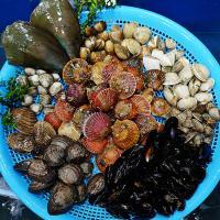 마산어시장 해물탕 조개찜 모듬세트